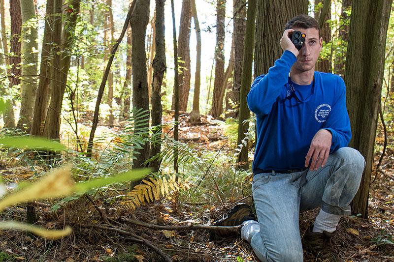 wake forest essay