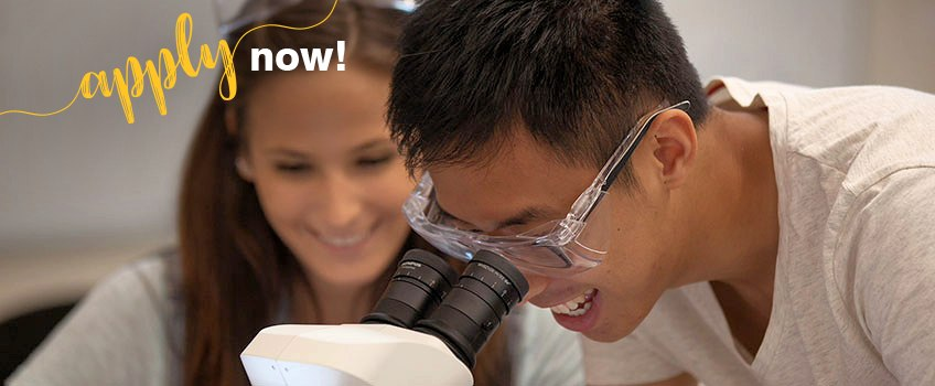 Apply to Stockton Now - Image of Students looking into a microscope