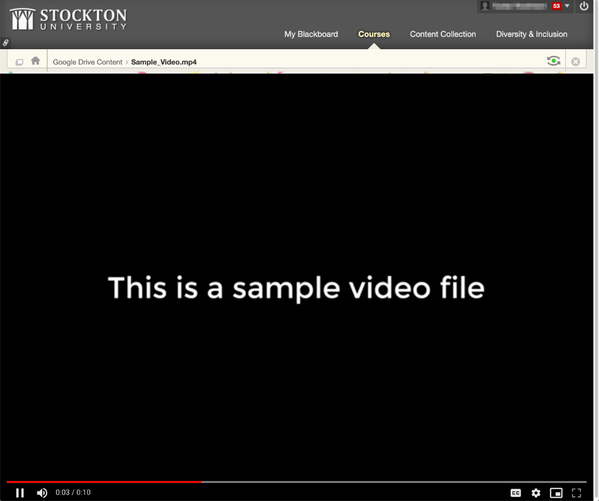 A screenshot of an embedded video file playing within Blackboard.