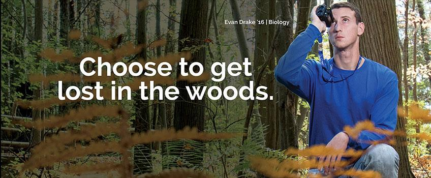 Choose to get lost in the woods