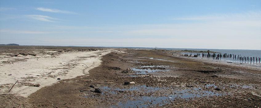Moores Beach East Prefill