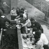 A Backyard Barbecue among Friends.