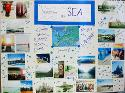 Semester at Sea - Blaire Ennis