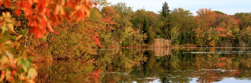 Lake Fred