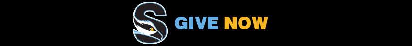 Give now banner