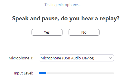 Screenshot of Microphone test for Zoom