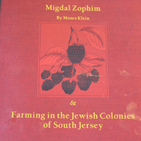 Migdal Zophim cover