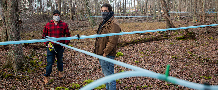 maple sugaring tubing