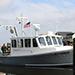 boat petrel