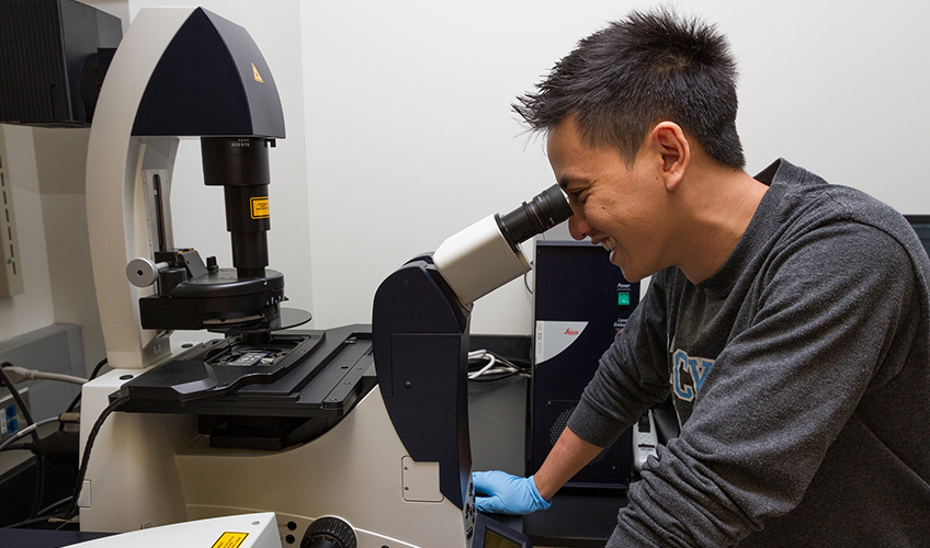 Image of student looking through the Leica TCS Confocal Microscope