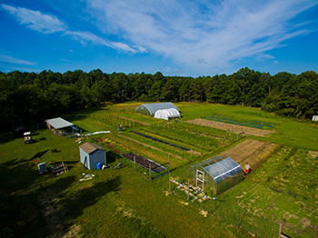 Stockton University Organic Farm, School of Natural Sciences and mathematics