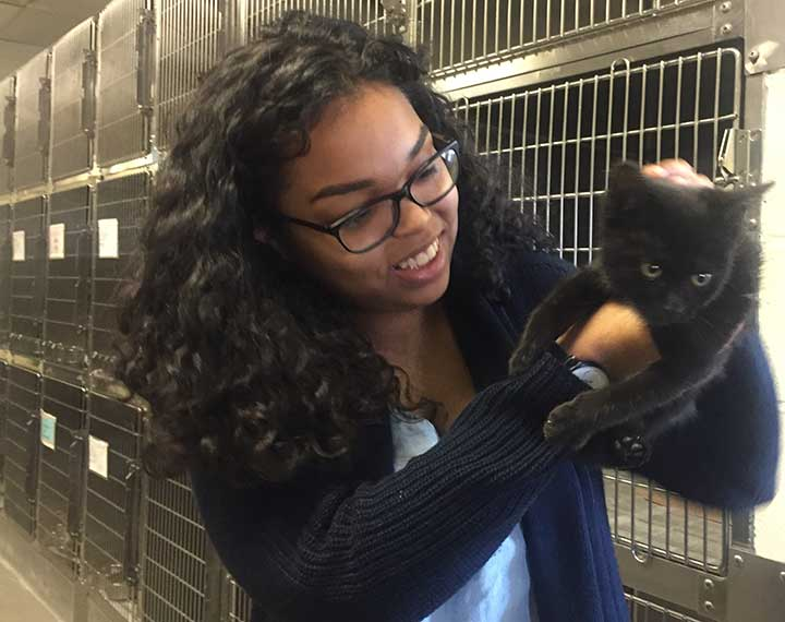 Student at animal shelter